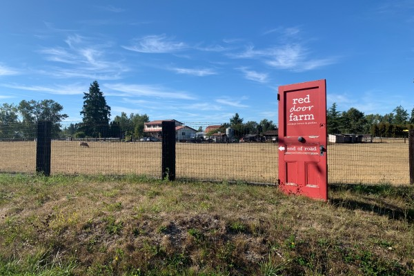 Campbell Valley Homes for Sale